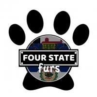 Fourstate Furs Monthly Art Meet